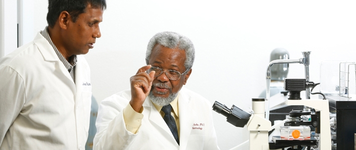 meharry school of medicine research